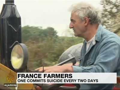 Suicide risk rife among France's farmers